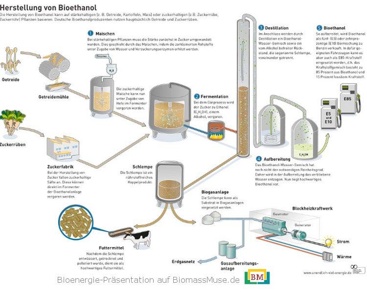 12-Herstellung-von-Bioethanol