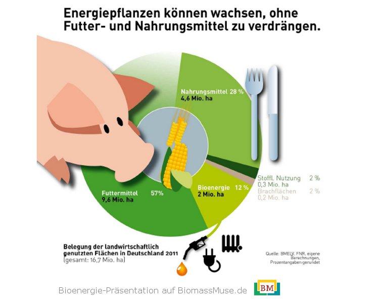 24-Konkurrenz-Biotreibstoffe-Nahrungsmittel