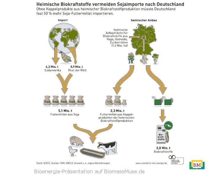 25-Biokraftstoffe-vermeiden-Soja-Importe