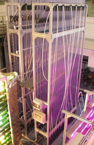 Foto Algenreaktor Bioreaktor