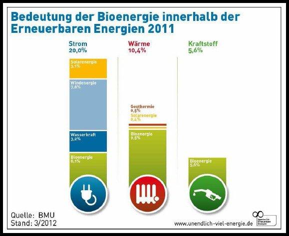 Grafik zeigt Anteile der Bioenergie im Strom Wärme und Kraftstoffmarkt