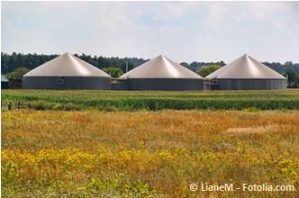 Biogasanlagen beim Betrieb