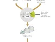 Grafik zeigt Bioenergie Potential von Restoffen wie Gülle und Mist