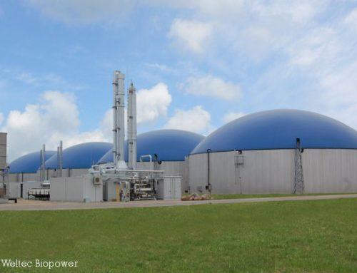 Biomethananlage im Biomasse-Cluster Arneburg geht in Betrieb