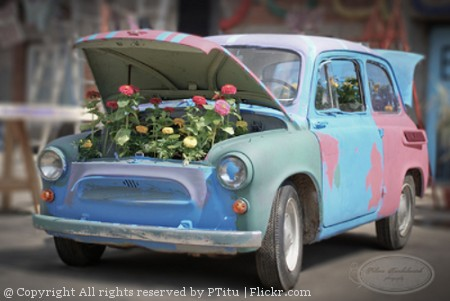 Car with flowers in the tank