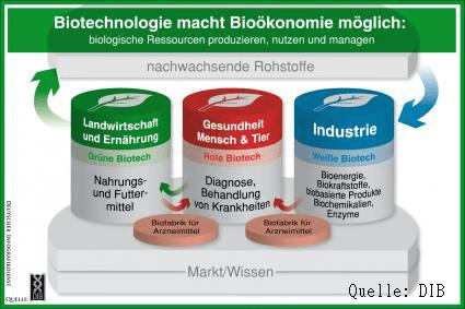 Biotechnologie und BioÖkonomie