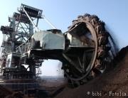 Energiepflanzen auf Bergbaufolgelandschaften