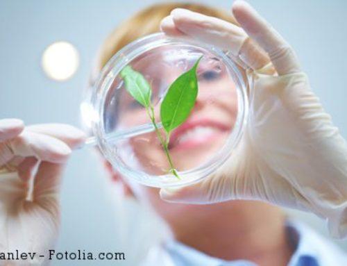 BioÖkonomie: Im Auge von Wissenschaft und Forschung