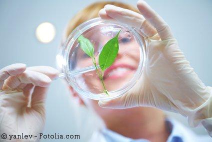 Forschung und Wissenschaft zur biobasierten Kreislaufwirtschaft