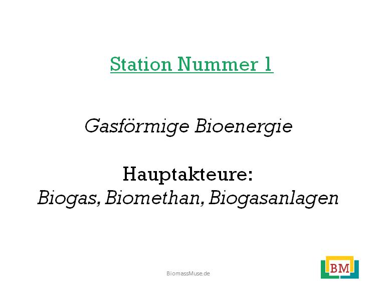 Gasförmige-Bioenergie-Präsentation
