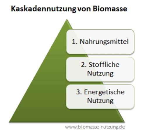 Kaskadennutzung-Biomasse