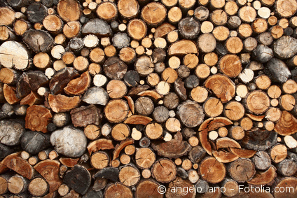 Foto Kaskadennutzung Holz