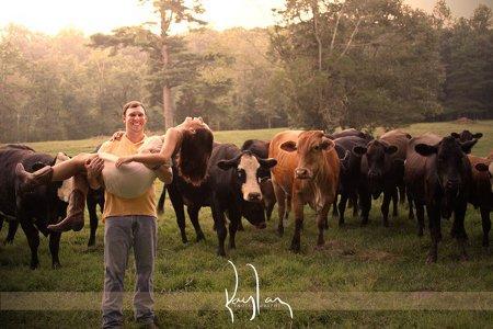 Liebespaar vor Herde von Kühen und Rindern