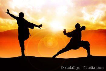 Kung Fu Kämpfer studieren