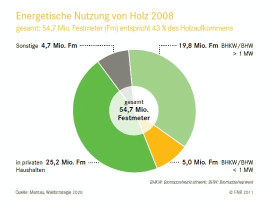 Menge Nutzung Holzenergie feste Biomasse Deutschland