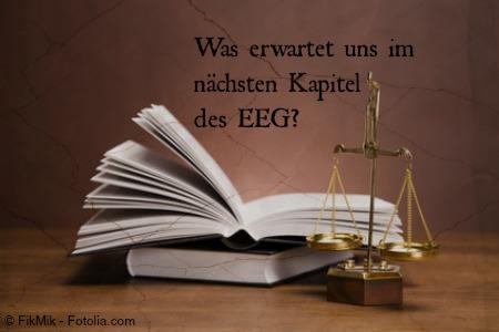 Buch EEG Novelle