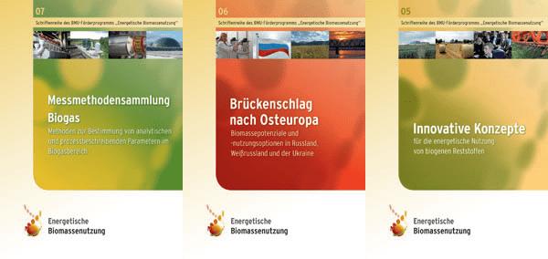Publikation Bioenergieforschung