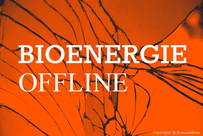Spiegel Online Bioenergie