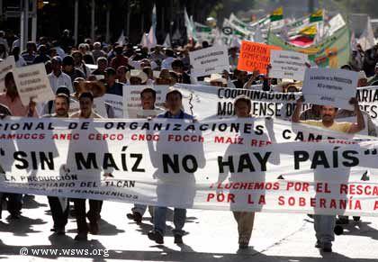 Tortilla Krise in Mexiko durch Anstieg der Nahrungsmittelpreise