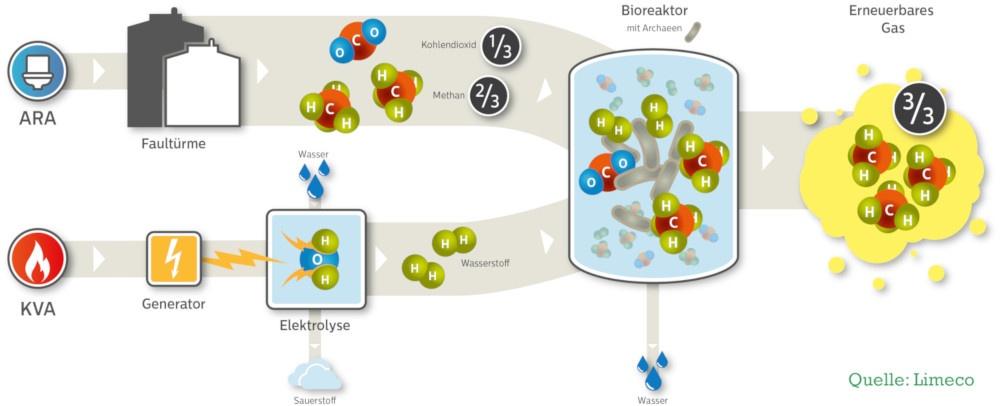 Biologisches Verfahren zur Herstellung Wasserstoff