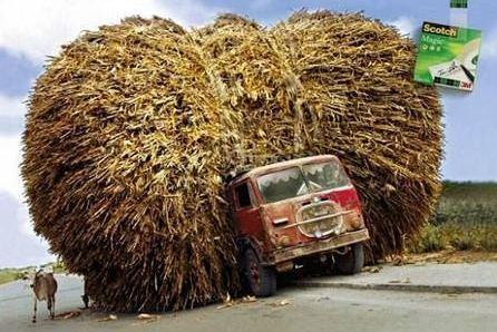 Mit Biomasse überladener LKW