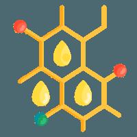 Bioenergie Kohlenstoff Kohlenhydrate Geschichte