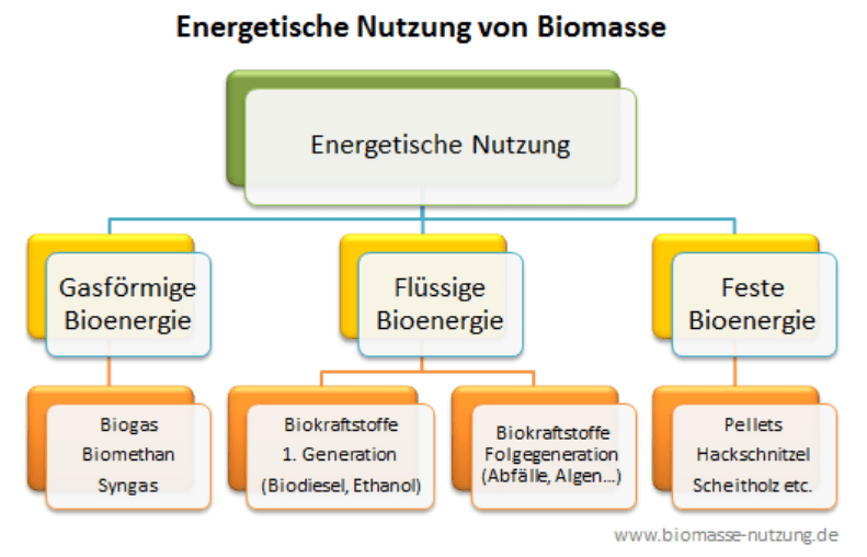energetische nutzung biomasse diagramm