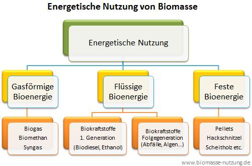 ABbildung Grafik Biokraftstoff feste flüssige gasförmige Bioenergieträger