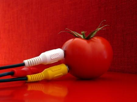 Bild zu Vorteilen der Bioenergie