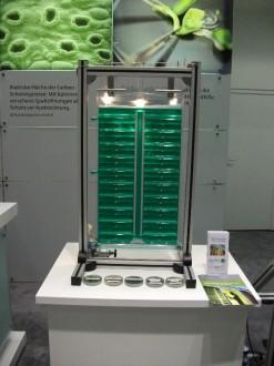 Algenbioreaktor