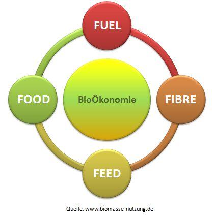 Bioökonomie betrifft Biomaterialien Biokraftstoffe Förderprogramm BioÖkonomiestrategie