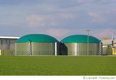 Biogasanlage Fermenter Festbettreaktor Bionoversion Mikrobiologie Biotechnologie