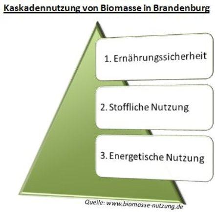 Biomassestrategie für Biogas Pellets Biokraftstoffe in Brandenburg/ Deutschland