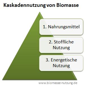 Nachwachsende Rohstoffe als Lebensmittel stoffliche und energetische Nutzung