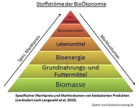 Biomasse Nachwachsende Rohstoffe und BioÖkonomie ihr Marktvolumen und Marktpreis