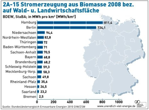 Biomasse Strom und Wärme BMHKW in Berlin Brandenburg Vattenfall Biomasse Strategie
